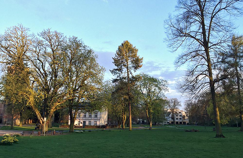 Stadtpark in Bernau: Hier gibt sich die Stadt mit der Parkpflege wirklich Mühe