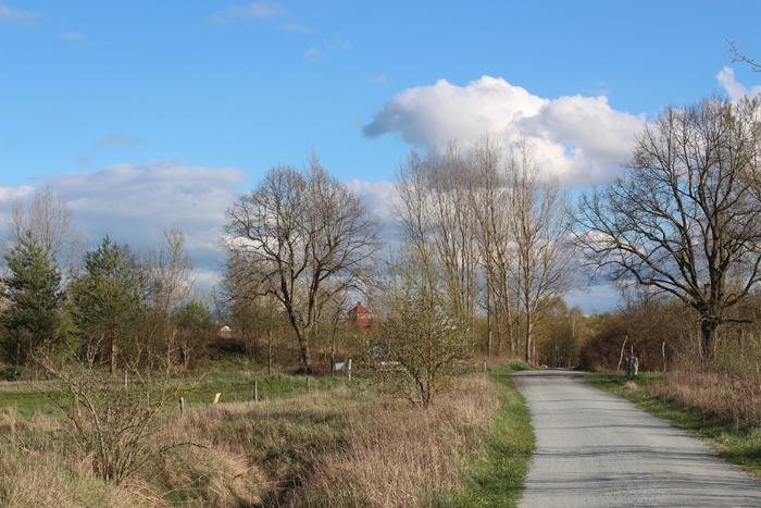 Der Radweg durch den Bucher Forst: Auf dem Weg vom Gorinsee zur Krankenhausstadt Berlin-Buch