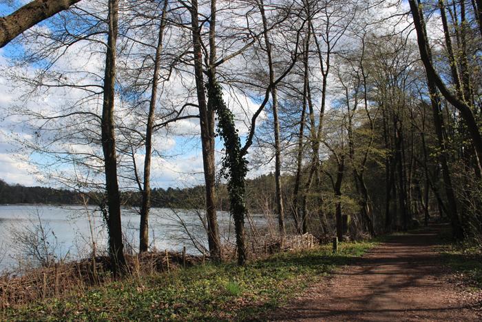 Die Seepromenade am Stolzenhagener See: Hier befindet sich das Café am Park