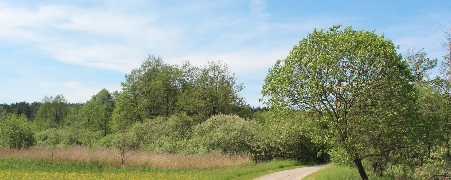 Foto vom Biesenthaler Becken