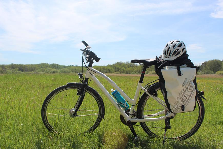 Starten, wo es grün ist: Hinter Bernau zeigt sich der Radfernweg Berlin-Usedom landschaftlich von seiner schönsten Seite