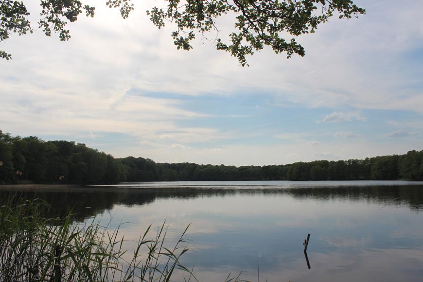 Glambecker See: Natur pur genießen