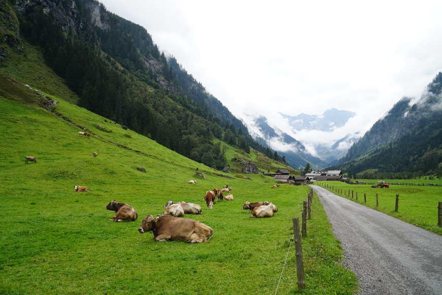 Wanderweg Gasthof Stillup