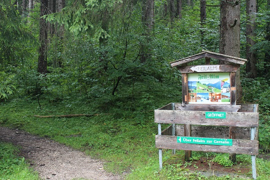 Von der Fahrstraße in den Waldweg: Die Tour zum Feilkopf ist eine ideale Familientour