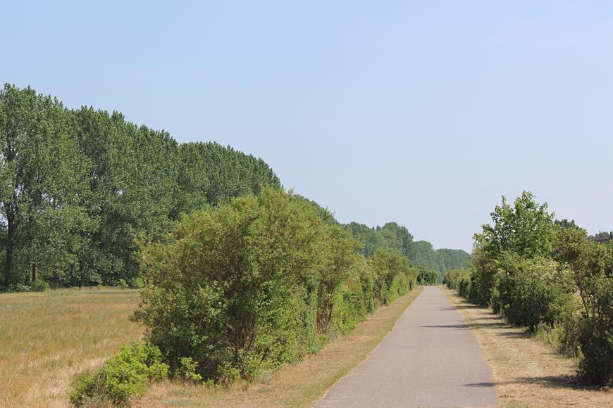 Radweg Mönkebude am Haff