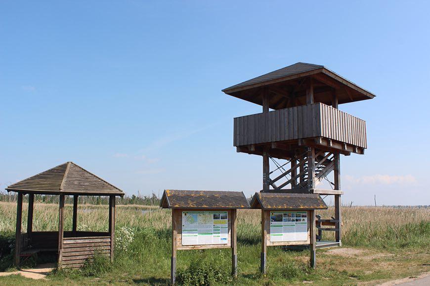 Aussichtsturm Naturschutzgebiet Anklamer Stadtbruch