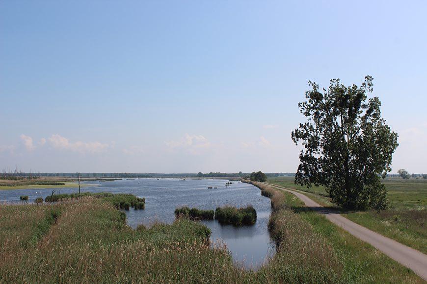 Naturschutzgebiet Anklamer Stadtbruch