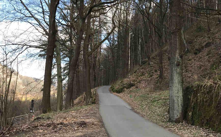 Elberadweg Rathen
