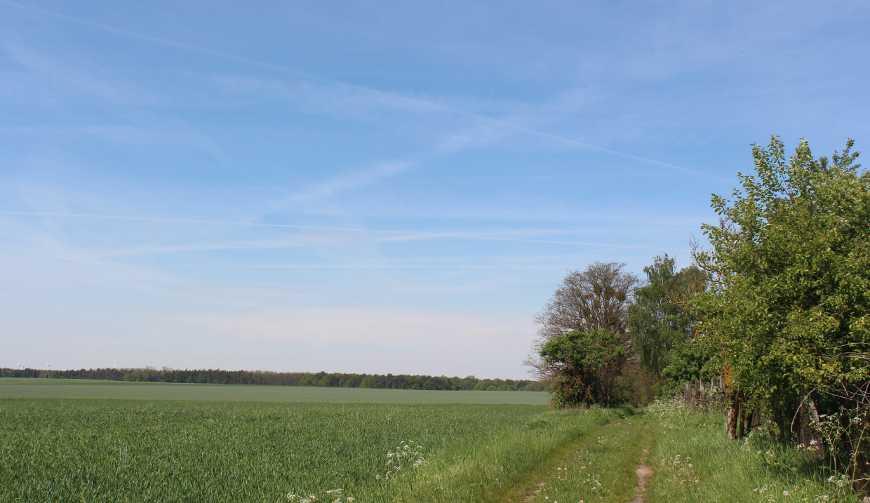 Landschaft am Radweg zwischen Bernau und Wesendahl