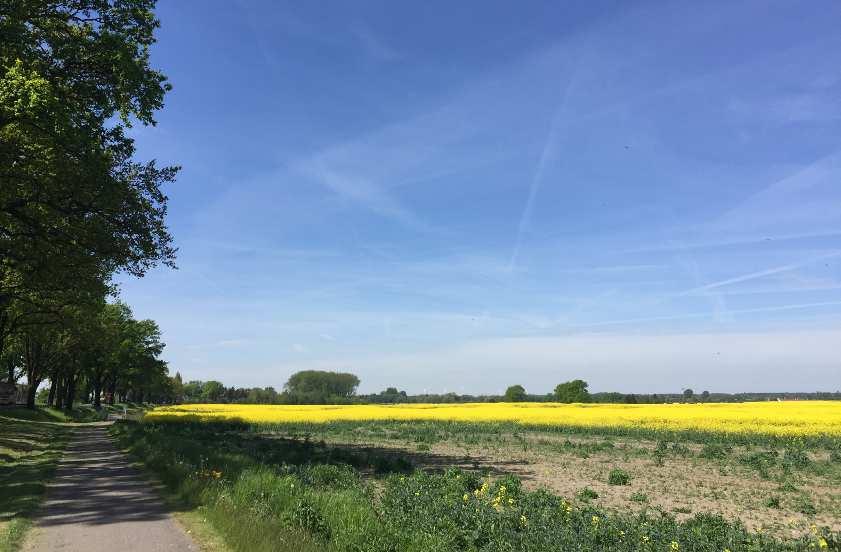 Radweg Bernau - Wesendahl