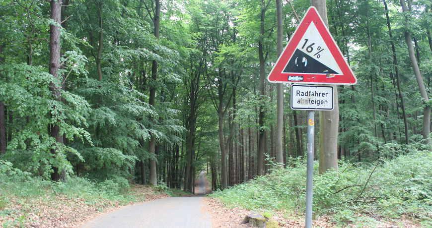 Radweg bei Ueckeritz Usedom