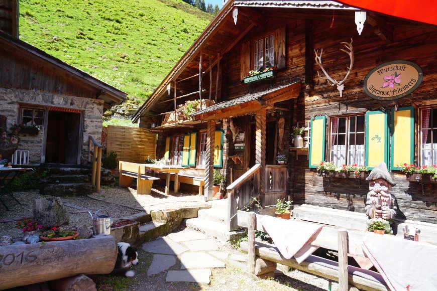 Alpenrose Fellenberg Zillertal