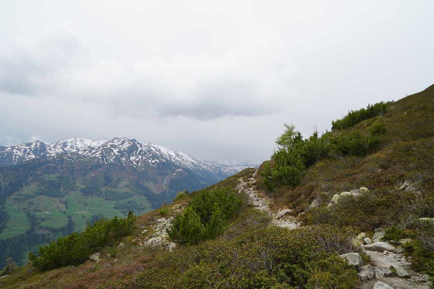 Schmaler Weg von der Geolsalm über die Gartalm zum Gasthof Loas.
