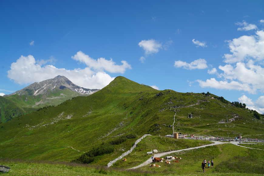 Filzenkogel und Ahornspitze im Zillertal