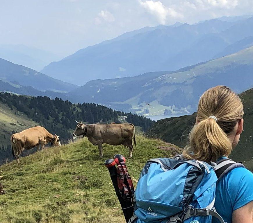 Ausblick beim Aufstieg auf den Gaulkopf