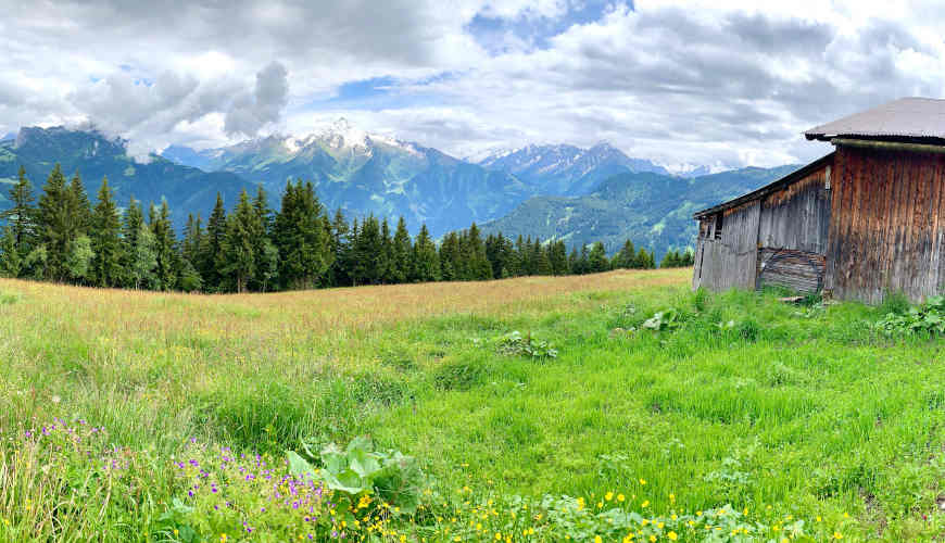Ausblick Nasenalm zur Ahornspitze und Gerlossteinwand