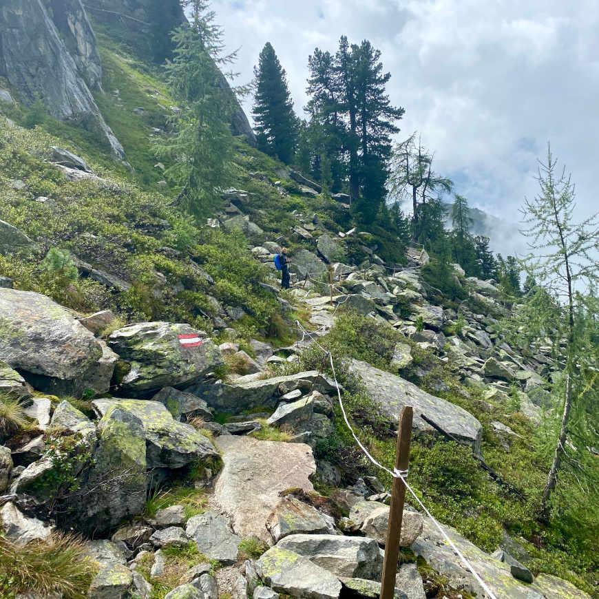 Zwischen Trisslalm und Gletscherblickalm hinter Wildkaralm